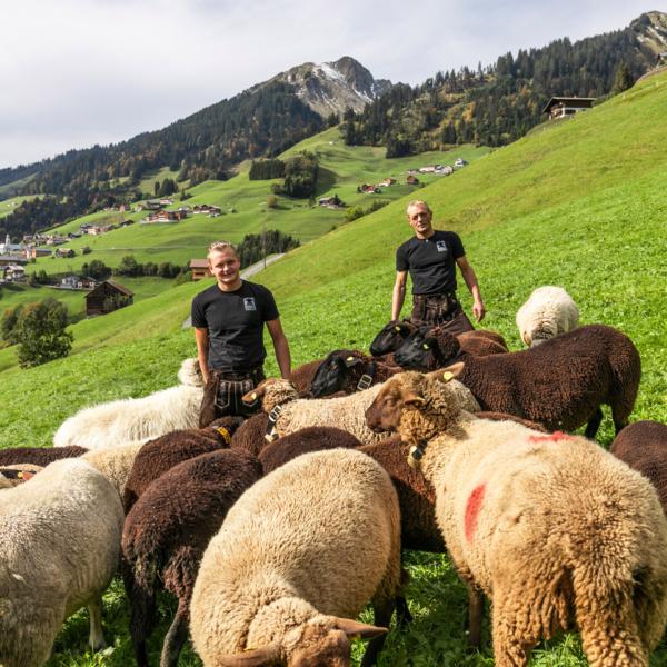 Jürgen Konzett und Sohn Marco inmitten von Schafen | Foto: Weissengruber & Partner