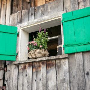Ein Geflochtener Korb Mit Pflanzen Auf Der Alpe Stongen   Foto: Weissengruber & Partner