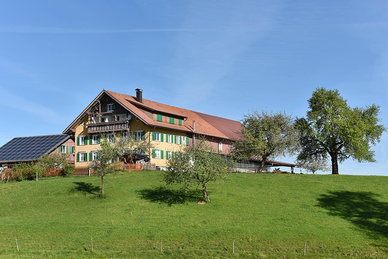 Der Hof Von Josef Heidegger, Im Vordergrund Sieht Man Eine Grüne Wiese Mit Bäumen