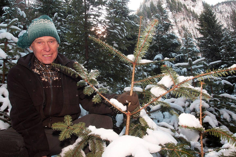 Karl Danner Sitzt Neben Einem Seiner, Mit Schnee Bedeckten Christbäume Und Hält Diesen Fest, Dabei Lächelt Er In Die Kamera