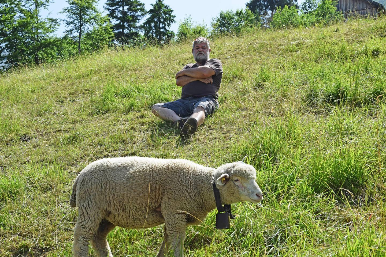 Bernhard Schwärzler Sitzt In Der Wiese Auf Einem Hügel, Vor Ihm Grast Ein Schaf