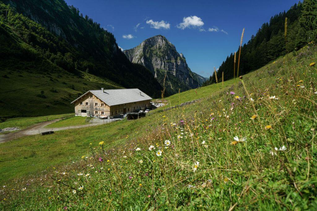 Ansicht Der Weissenbachalpe Aus Der Entfernung. Rundherum Sind Grüne Wiesen, Im Hintergrund Ist Ein Berg Zu Sehen.