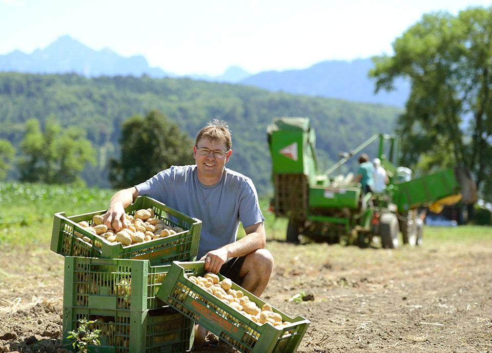 Kilian Schatzmann Kniet Auf Einem Kartoffelacker, Dabei Stehen Mehrere Kisten Mit Kartoffeln Vor Ihm, Im Hintergrund Erkennt Man Außerdem Auch Noch Eine Maschine, Welche Bei Der Kartoffelernte Hilft